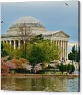 Jefferson Memorial, Springtime In Dc Is When Things Bloom, Like The Japanese Cherry Trees Canvas Print