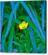 Jellow Flower Canvas Print