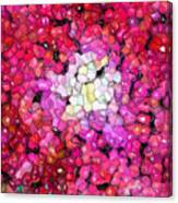 Jelly Bean Rose Canvas Print