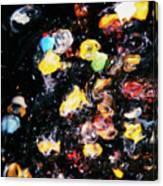 Jelly Fish Canvas Print