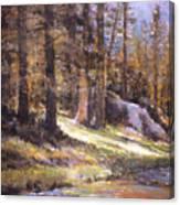 Jemez Light Canvas Print