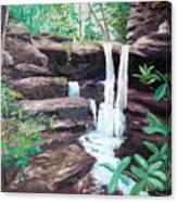 Jenny Falls Canvas Print