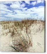 Jersey Dune I Canvas Print
