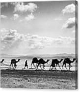 Jerusalem: Caravan, C1918 Canvas Print