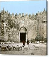 Jerusalem: Damascus Gate Canvas Print
