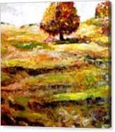 Jerusalem Hills Canvas Print