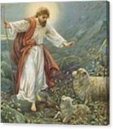 Jesus Christ The Tender Shepherd Canvas Print