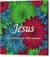 Jesus The Reason For The Season Christmas  Canvas Print