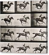 Jockey On A Galloping Horse Canvas Print