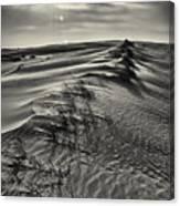 Jockey's Ridge Texture 7116 Canvas Print