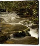 Joe's Creek Canvas Print