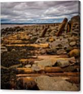 Joggins Fossil Cliffs Canvas Print