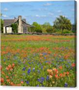 John P Cole's Cabin In Old Baylor Park Canvas Print