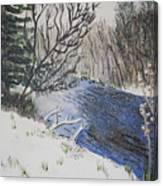 Johnson Vermont In Spring Snow Storm Canvas Print