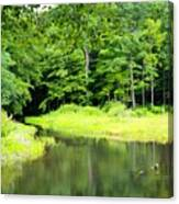 Jones Mill Run Creek Canvas Print