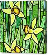 Jonquil Glory Canvas Print