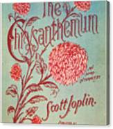 Joplin: Chrysanthemum Canvas Print