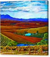 Jordan Vineyard Canvas Print