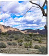 Joshua Tree National Park Landscape Canvas Print