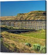 Joso High Bridge Over The Snake River Wa 1x2 Ratio Dsc043632415 Canvas Print