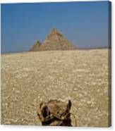 Journey Into The Desert Canvas Print