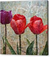 Joy Withtulips Canvas Print
