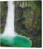 Juana Falls Canvas Print
