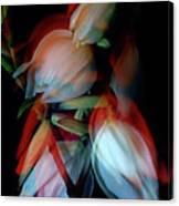 Jukka Flowers Canvas Print