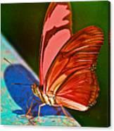 Julia Heliconian Butterfly In Iguazu Falls National Park-brazil Canvas Print