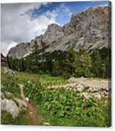 Julian Alps Canvas Print