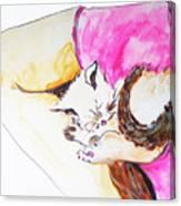 July Kitty In Rachaels Lap Canvas Print