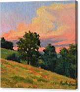 July Thunderhead Canvas Print