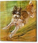 Jumping Dog Schlick 1908 Canvas Print
