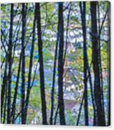Juneau Canvas Print