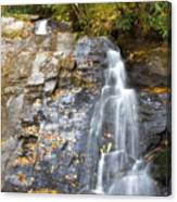 Juney Whank Falls In Nc Canvas Print
