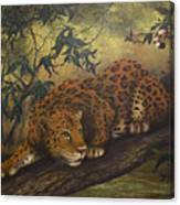Jungle Cat Canvas Print
