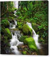 Jungle Falls Canvas Print