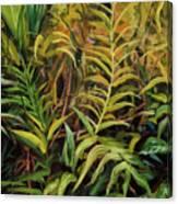 Jungle Ferns Canvas Print