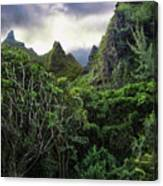 Jungle Mountain Canvas Print