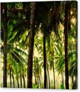 Jungle Paradise Canvas Print