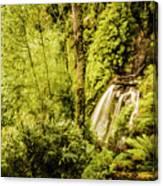 Jungle Steams Canvas Print