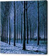 Jungle Trees In Blue  Canvas Print