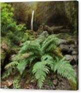 Jurassic Forest Canvas Print