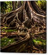 Jurassic Park Tree Trailing Root Canvas Print