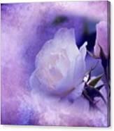 Just A Lilac Dream -4- Canvas Print