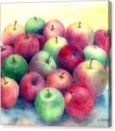 Just Apples Canvas Print