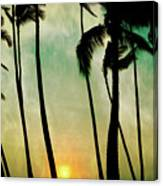 Just Before Sunset Canvas Print