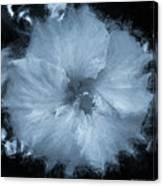 Blue Hibiscus Floral Portrait Canvas Print