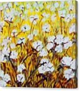 Just Cotton Canvas Print