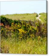 Just Over The Hill Canvas Print